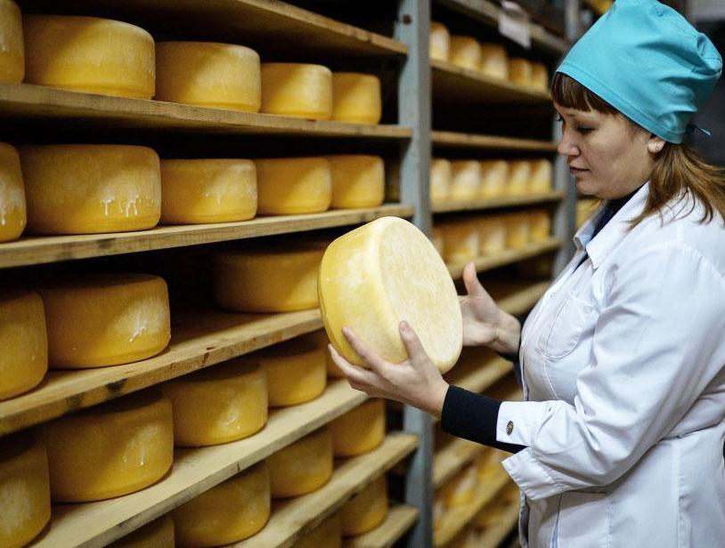 ВОмской области самые недорогие вСибири мясо, сыр ирыба
