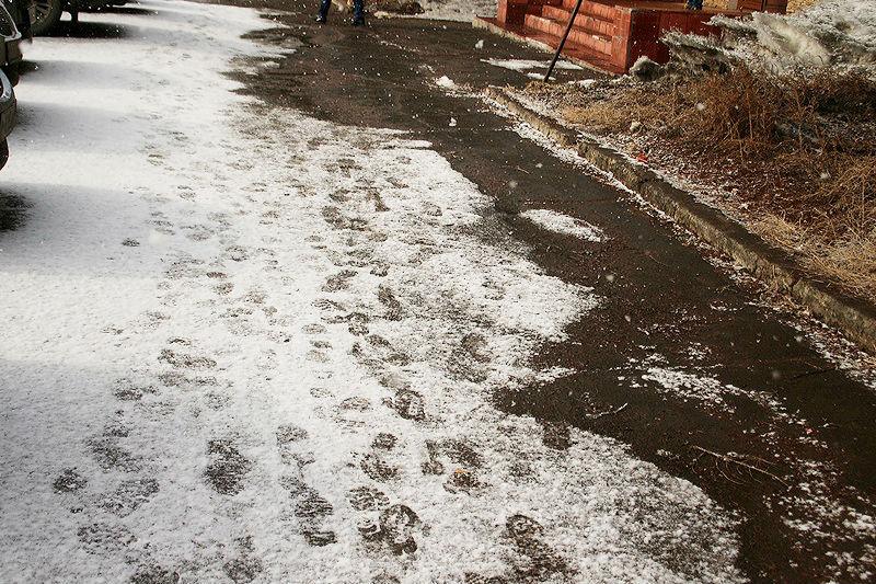 Наследующей неделе вОмске иобласти продолжится снегопад