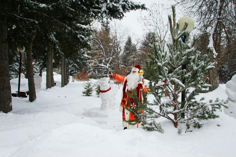 Омичей ждут теплые новогодние каникулы