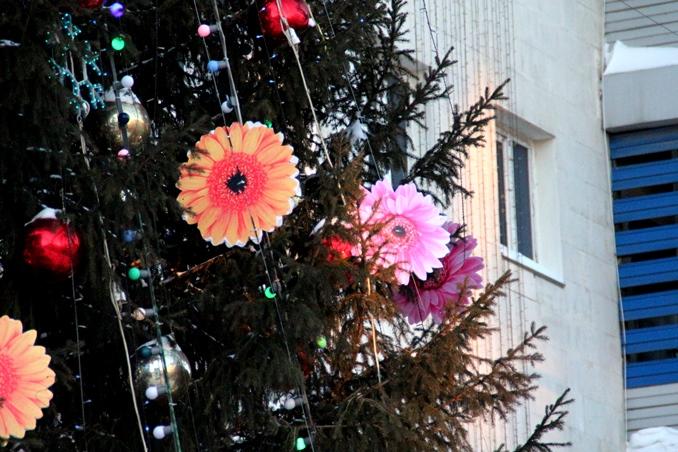 Главная елка Омска откроется уже в это воскресенье
