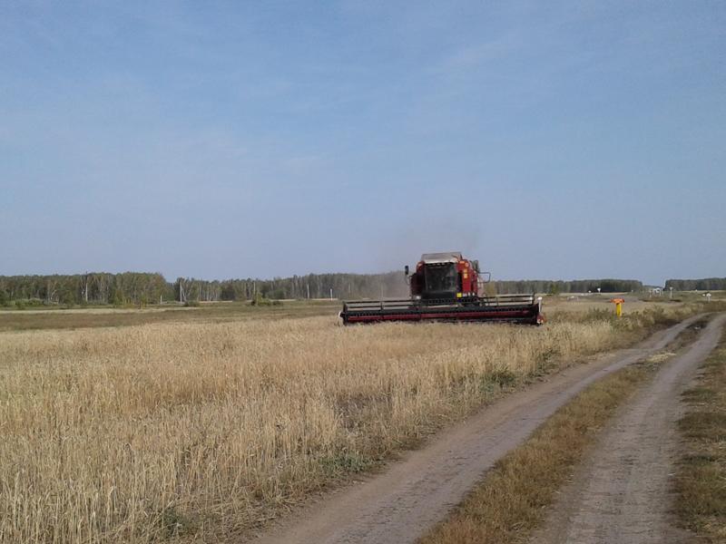 ВСамарской области убрано неменее 2,75 млн тонн зерновых