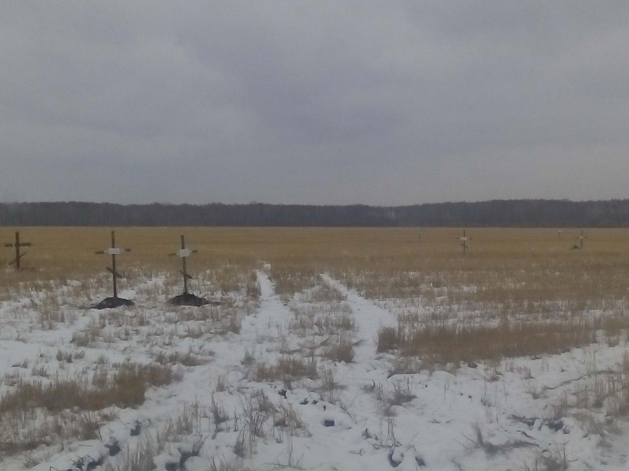Вполе под Омском обнаружили свежие могильные кресты стабличками наанглийском