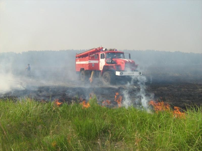 Натерритории тульского региона вводится особый противопожарный режим