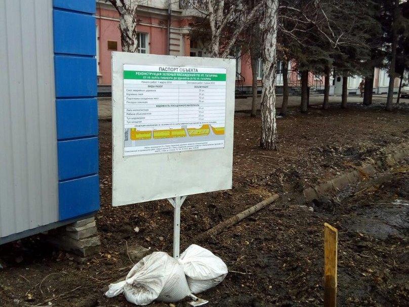 Мэр Омска будет лично согласовать вырубку любого дерева