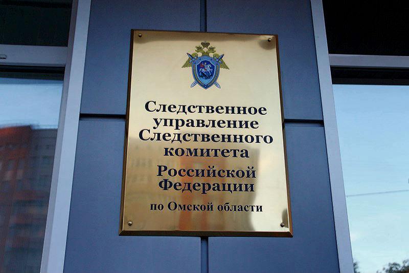 В Омске будут судить «отморозков», жестоко убивших мужчину под метромостом