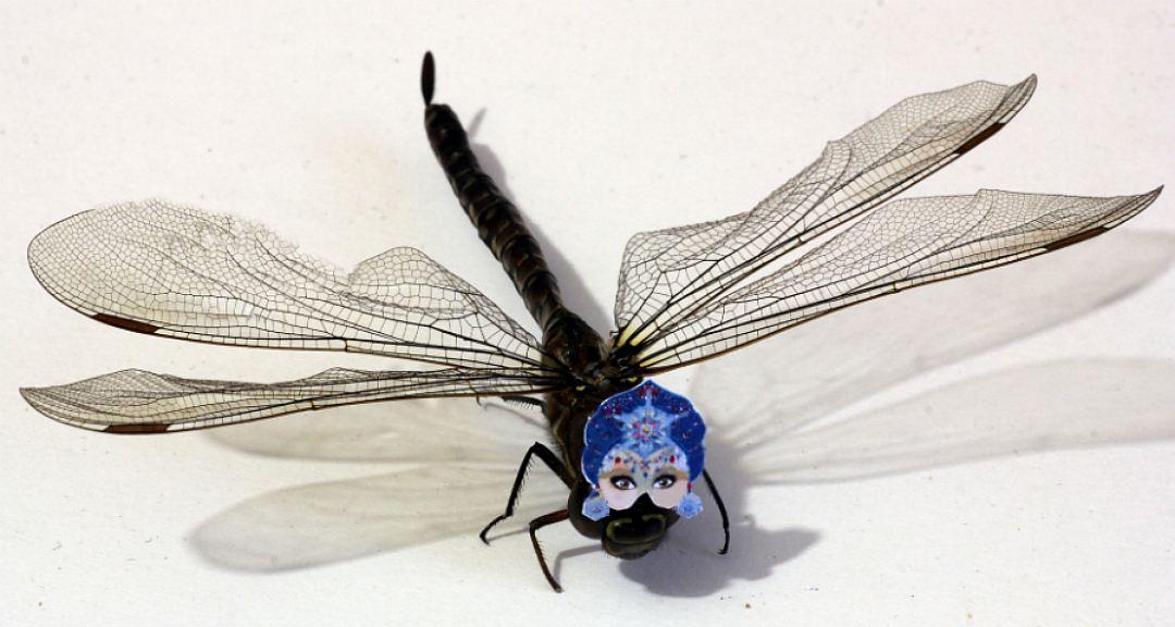 Омский микроминиатюрист создал новогодние маски насекомым