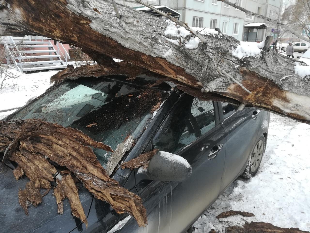 Фото разбитых машин в омске