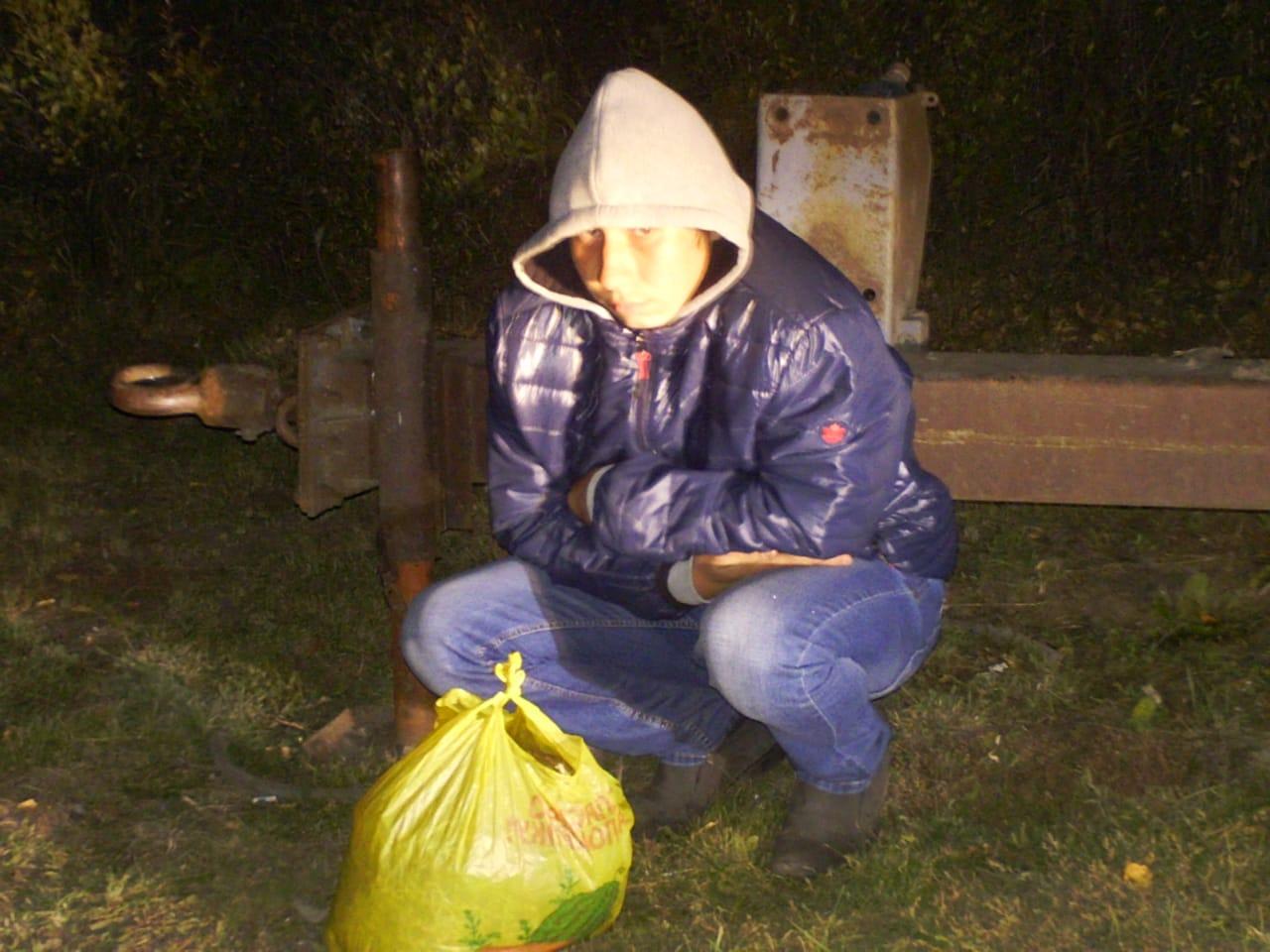 В омске изъято 9 кг гашиша Скорость online СВАО