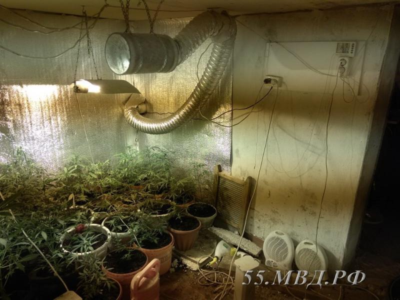 Как выращивать конопля в гараже что выводит из организма марихуану