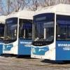 В России не будет бесплатного общественного транспорта