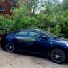 Ветер в Омске повалил дерево, которое упало на машины