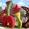 Стало известно, когда в Омске пройдет выставка Флора