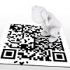 Система QR-кодов начнет действовать в Омске с 8 ноября